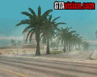San Andreas Realistic Palm Trees